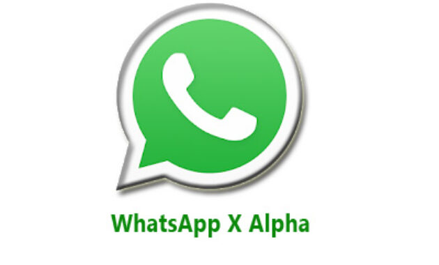 whatsapp x alpha